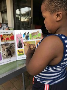 My Big Book of South African Animals+Children's Book Review