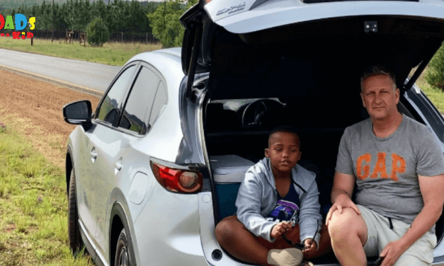 TEN FAMILY ROAD TRIP TIPS