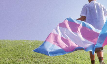 ACCLAIMED LGBTIQ+ DOCUMENTARIES TRANSHOOD AND WIG ON SHOWMAX